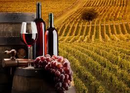 '19 fotoarticolo '19 in vino veritas..